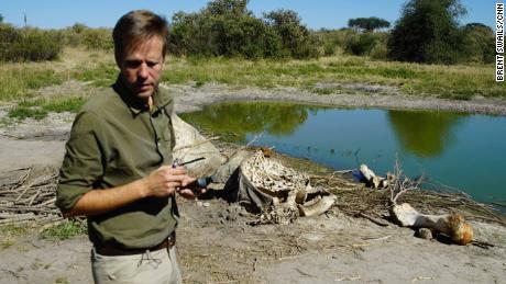 De terugkeer van Botswana naar de jacht op olifanten zal geen problemen oplossen, zegt de ex-president