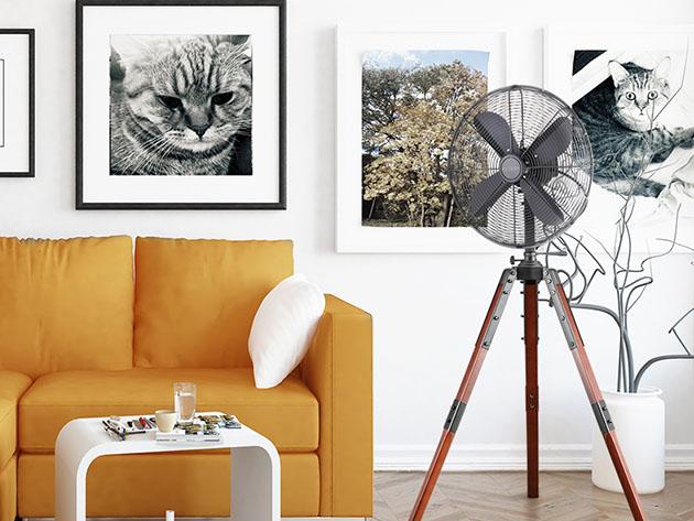 Een kamer met een bank, een ventilator op een statief en kunst aan de muren