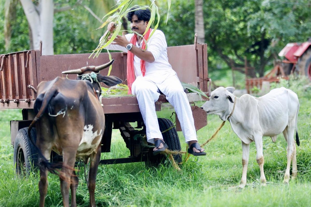Crazy Ram Gopal Varma makes Pawan Kalyan fans pay Rs 25 to watch Power Star trailer