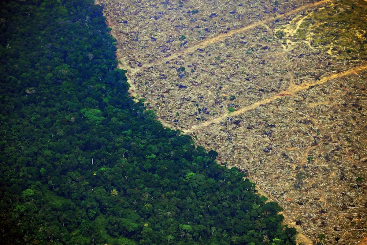 De mensheid wordt waarschijnlijk geconfronteerd met een snelle 'catastrofale ineenstorting', waarschuwt het onderzoek
